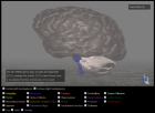 WebGL Brain Demo